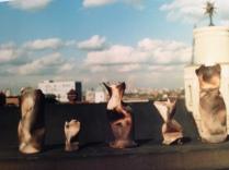 "Raku Ceramics. ""Battered Women"" Heather Gartside. Brixton, London 1988"