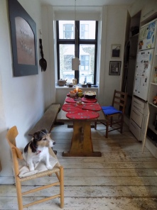 Still life with my Jack Russell in her pretty kitchen